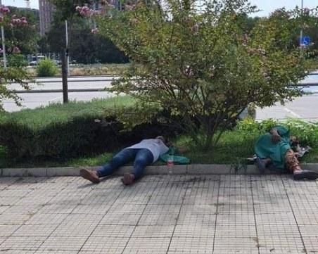 Полегнала е Гергана в Пловдив: Служители на