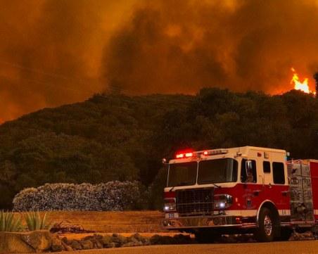 Извънредно положение в част от Калифорния, хиляди декари гора - изпепелени