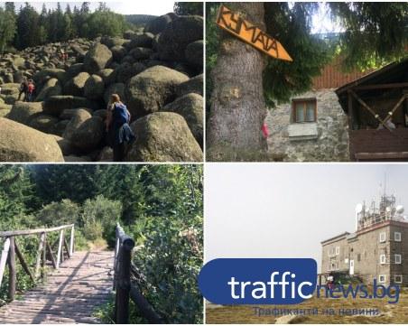 На разходка на Витоша: От Златните мостове към първенеца на планината