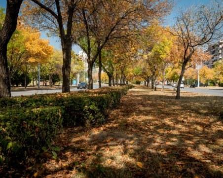 """Проф. Георги Рачев: Очаква ни суха есен и """"модерна"""" зима с дъжд и по-малко сняг"""