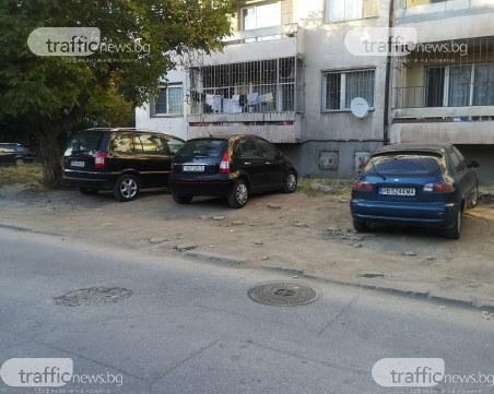 Пловдивчанка: Поради това ли зелените площи в града намаляват?