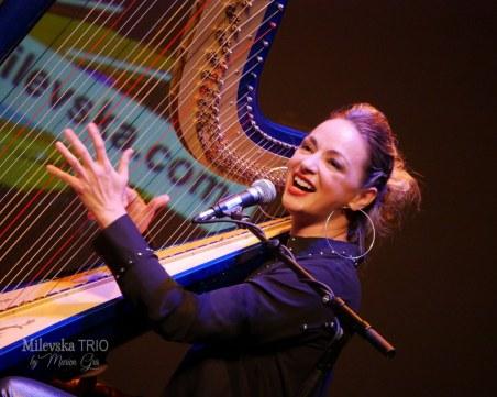 Kамерна сцена Пловдив се завръща с два вълшебни концерта