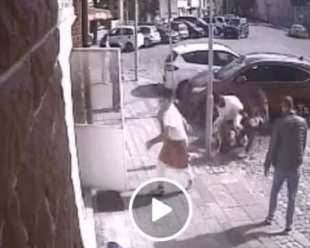 Кървава свада в Пловдив: Питбул се хвърли на коте, мъж се бори за живота му