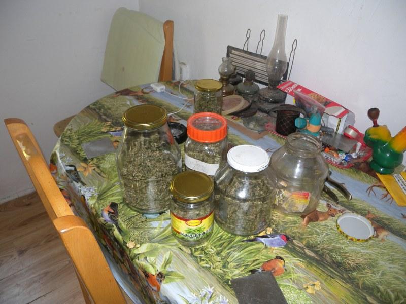 Арестуваха 12 дилъри, продавали наркотици по бургарските училища