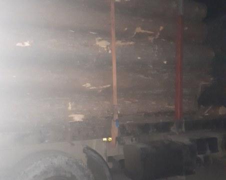 Екшън в Родопите! Горски гонят камион с изсечени дървета, хванаха го в цех за дървесина
