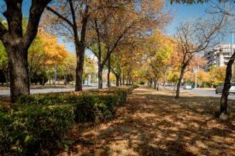 Затопля се! Златна есен чака Пловдив