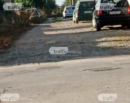 Полиция разкри голяма оранжерия с трева край Пловдив, Митко Кълбото е задържан