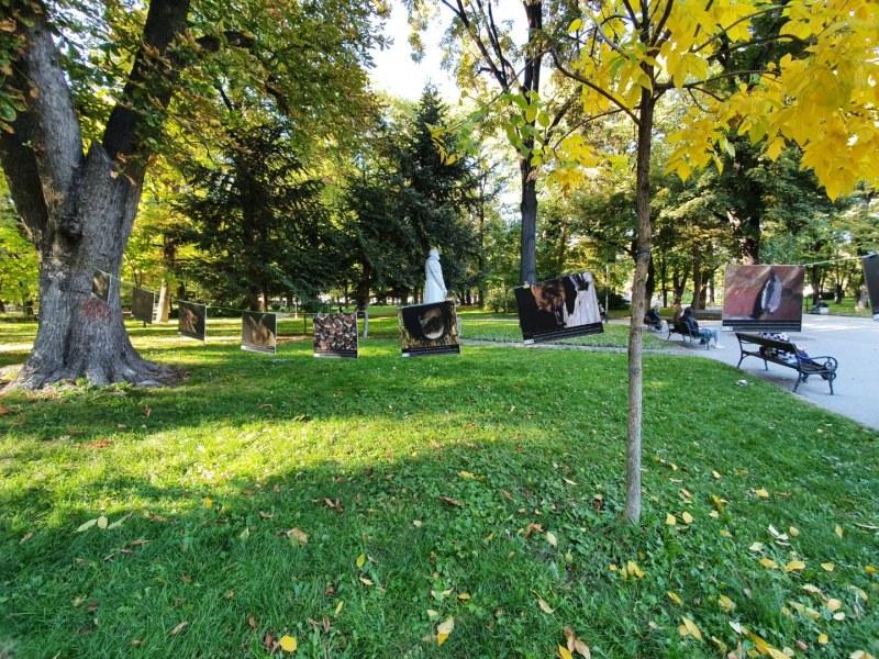 Природозащитници проследиха прилепи в Цар-Симеоновата градина с ултразвук