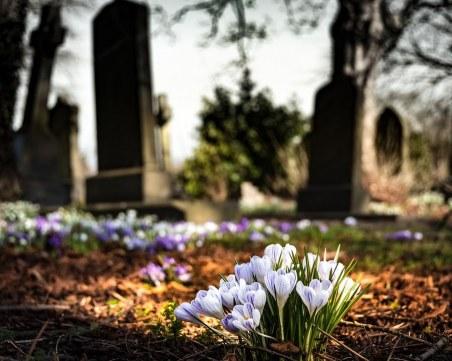 Покачва ли се смъртността в Пловдив?
