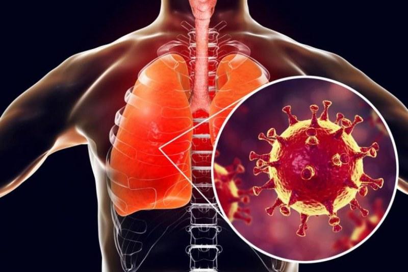 Защо коронавирусът е толкова опасен за човешкия организъм?