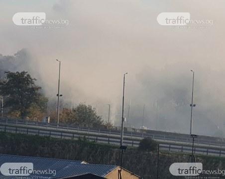 Половината Кършияка – обгазен, роми отново запалиха незаконно сметище