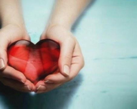 На този ден: Отбелязваме Световния ден на добротата