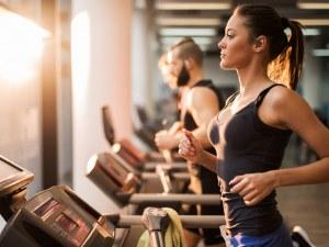 Фитнес тренировките – услуга от първа необходимост?