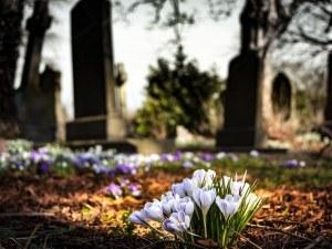 За последната седмица: Смъртността скочи двойно в България и Пловдив