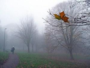 Мъгли и отрицателни температури сутрин, следобед слънцето пробива