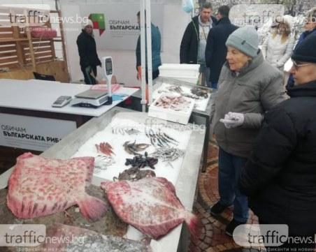 Започват проверките на магазините за риба преди Никулден