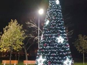 Още една красива елха грейна днес в Пловдив