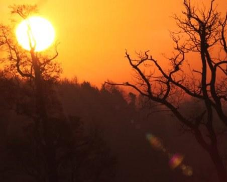 До края на седмицата: Температурите се покачват, слънцето се показва