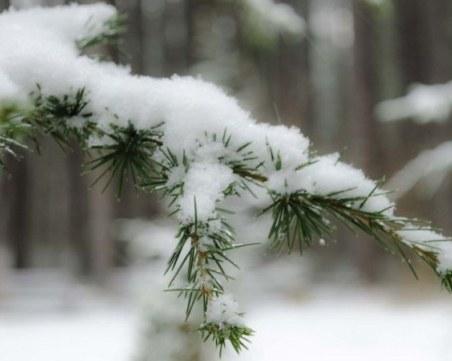 Много по-студено днес, очаква се и слаб сняг