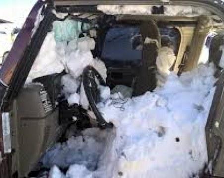 Три коли паднаха в дере в местност Попина лъка