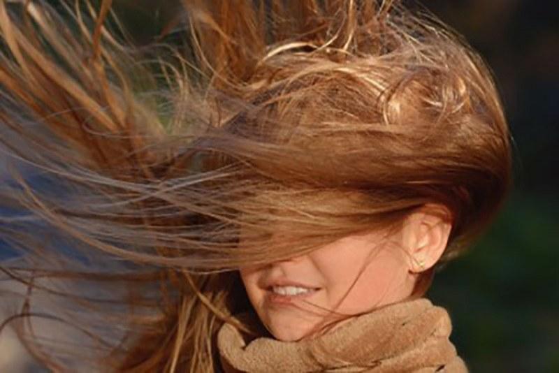 Опасен вятър в Пловдив! Очакват се пориви до 22 м/с