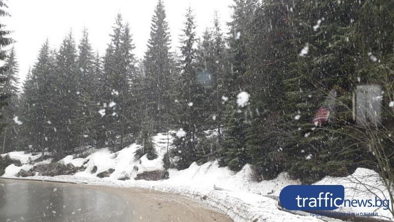 АПИ: Шофьорите да се готвят за зимни условия, може да има поледици