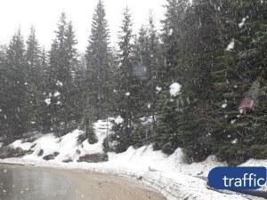До 25 см сняг в планинските проходи! МВР: Пътувайте, само ако е необходимо
