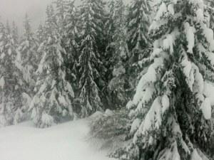 Български национали блокирани на Белмекен, пътищата затрупани от сняг