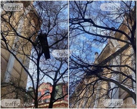 Опасно: Огромна ламарина виси смъртоносно на улица в центъра на Пловдив