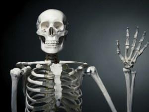 10 невероятни факта за човешкото тяло, които ще ви изумят