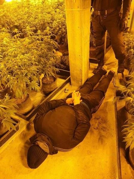 Гешев: Разбихме модерна лаборатория за марихуана