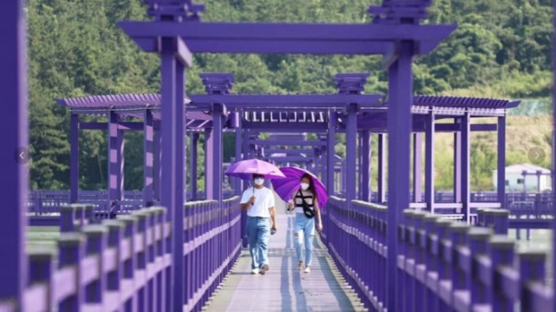 Южнокорейски остров боядиса град в лилаво, за да привлече туристи