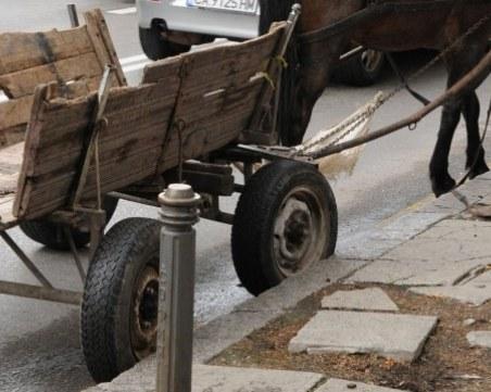 33-годишен е водачът на коня, потрошил четири коли в Пазарджишко