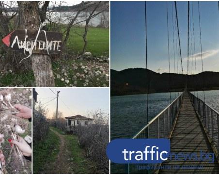 Без път, без коли! Откъснатото от света село Лисиците и най-дългият висящ мост у нас