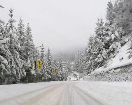 Над 50 см снежна покривка натрупа на Пампорово, пътищата в областта проходими