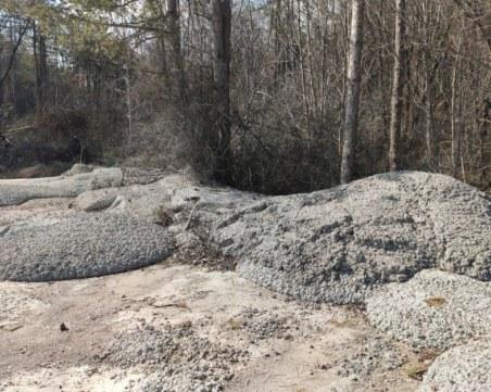 По пътя София - Варна: Бетонираха гора и дървета