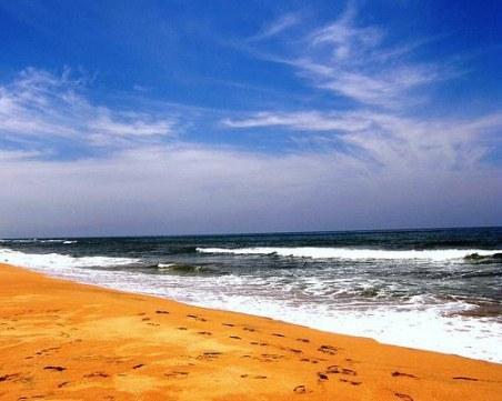 Морето изхвърли два мъртви кита, подозират натравяне с пластмаса