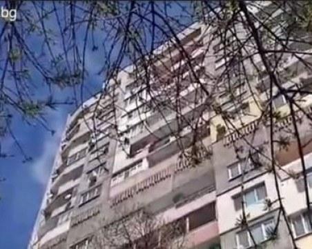 Пловдивчани скочиха в защита на изтормозено кученце в апартамент, полицията не може да намери жилището