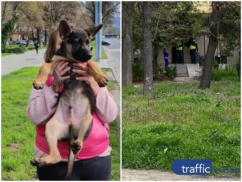 Историята на кученцето, тормозено в Кършияка, върви към хепи енд! Полицията извърши проверка на място