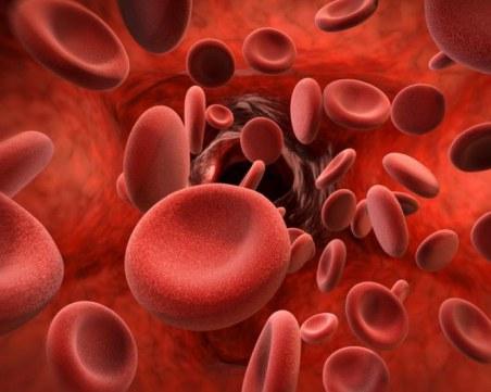 За 75% от хемофилиците по света все още не е осигурена адекватна грижа