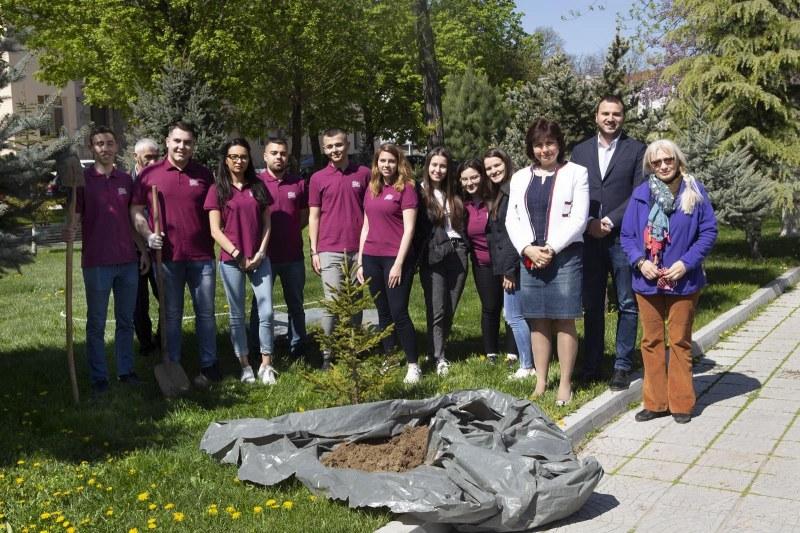 Бъдещи медици засадиха десетки борови дръвчета в Пловдив ВИДЕО