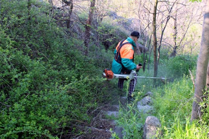 Пловдивчани чистят Дановия хълм в Деня на Земята