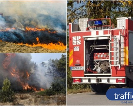Пловдивските огнеборци спасиха над 450 хиляди декари гори