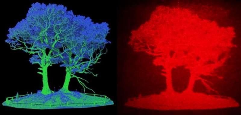 Иновация: 3D холограма може да подобри безопасността на пътя, предупреждава за обекти