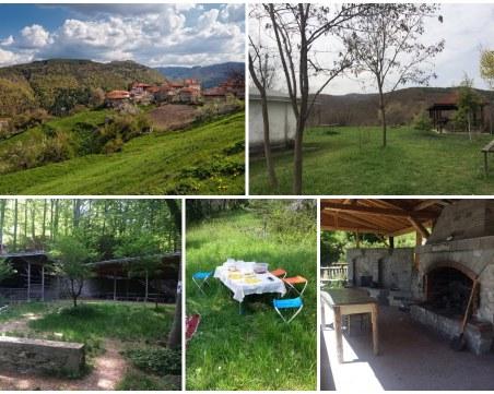 За хубавото време: Вижте няколко идеи за пикник край Пловдив
