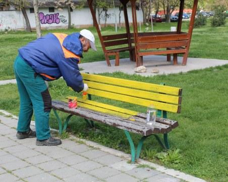 """Пейките в парк в """"Северен"""" грейнаха в свежи цветове"""