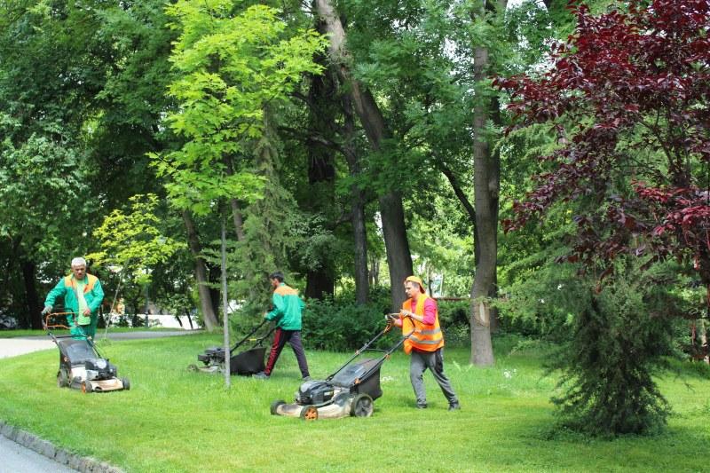 Продължава косенето на тревата в Пловдив, екипи работят и по празниците