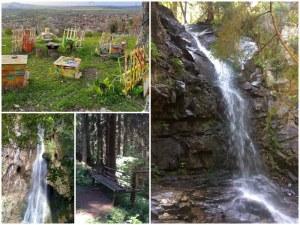 5 красиви водопада на час път от Пловдив