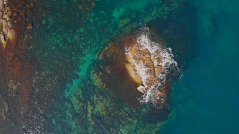 Д-р Константин Щерев: Под водите на Черно море може да има древен изгубен град