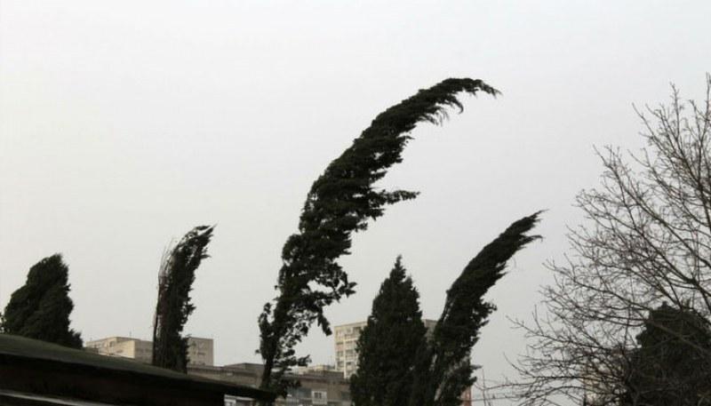 Жълт код за опасно време в Пловдив, вятърът достига до 24 метра в секунда